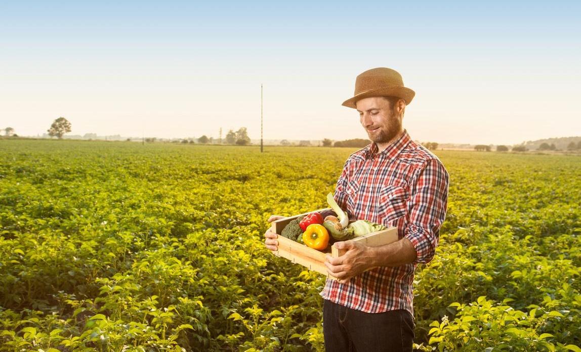 βιολογική_γεωργία