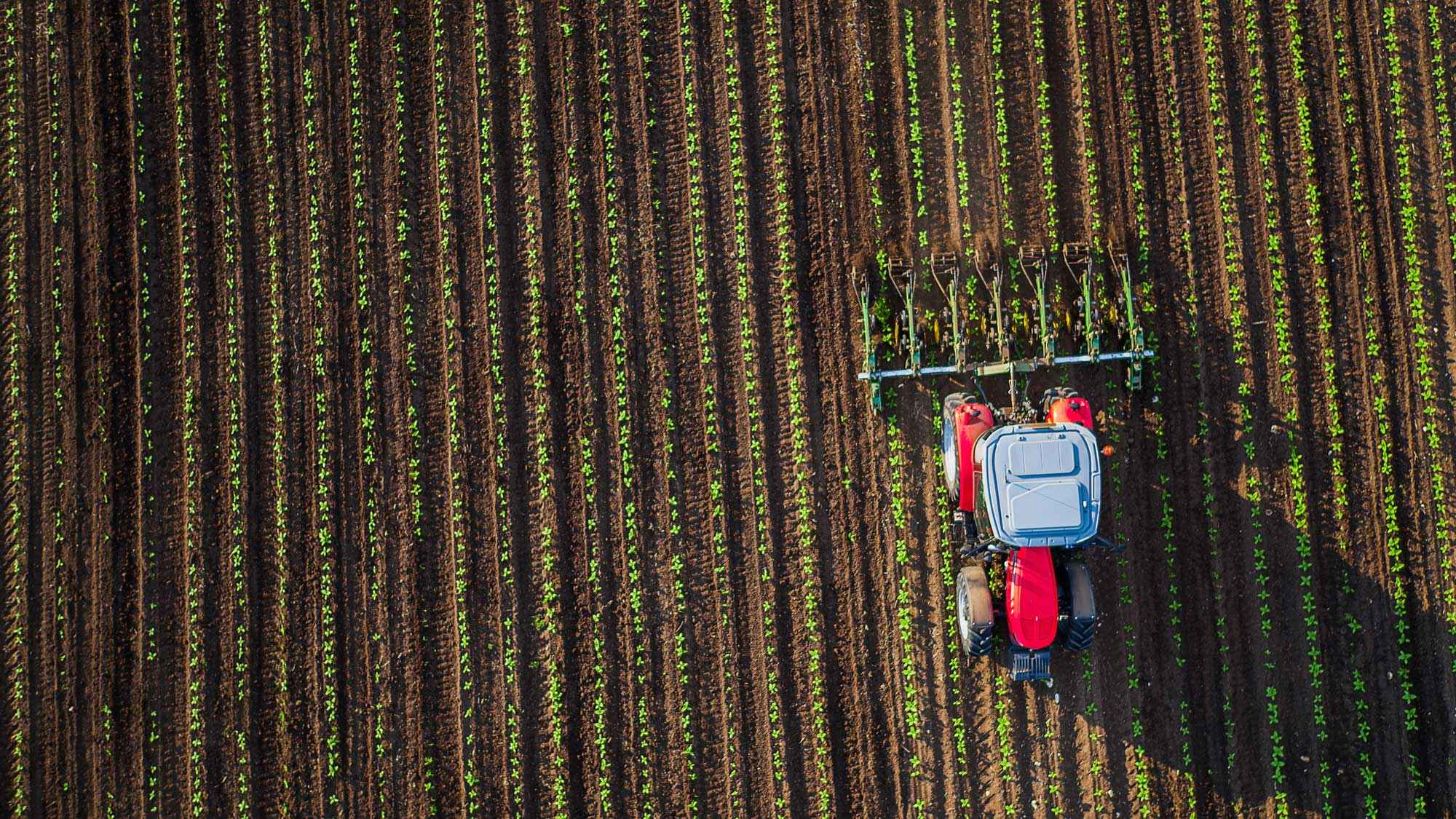 εφαρμοσμένο_μάρκετινγκ_αγροτικών_προϊόντων