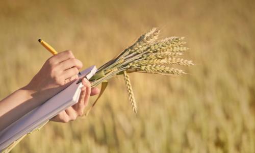 Εισαγωγή στα Γεωργικά Συστήματα Διαχείρισης Ποιότητας