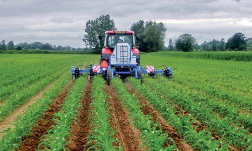 Λίπανση Καλλιεργειών Υψηλής Οικονομικής Αξίας