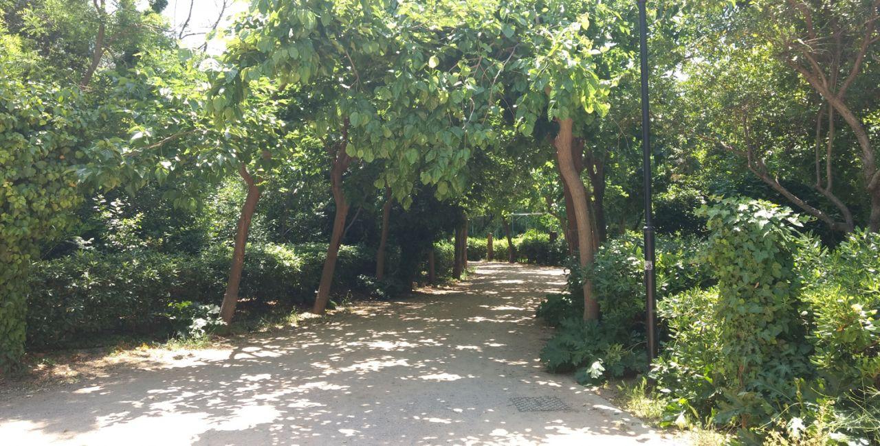 βιοκλιματική συμπεριφορα πάρκων