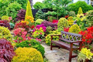 χρώμα_στον_κήπο