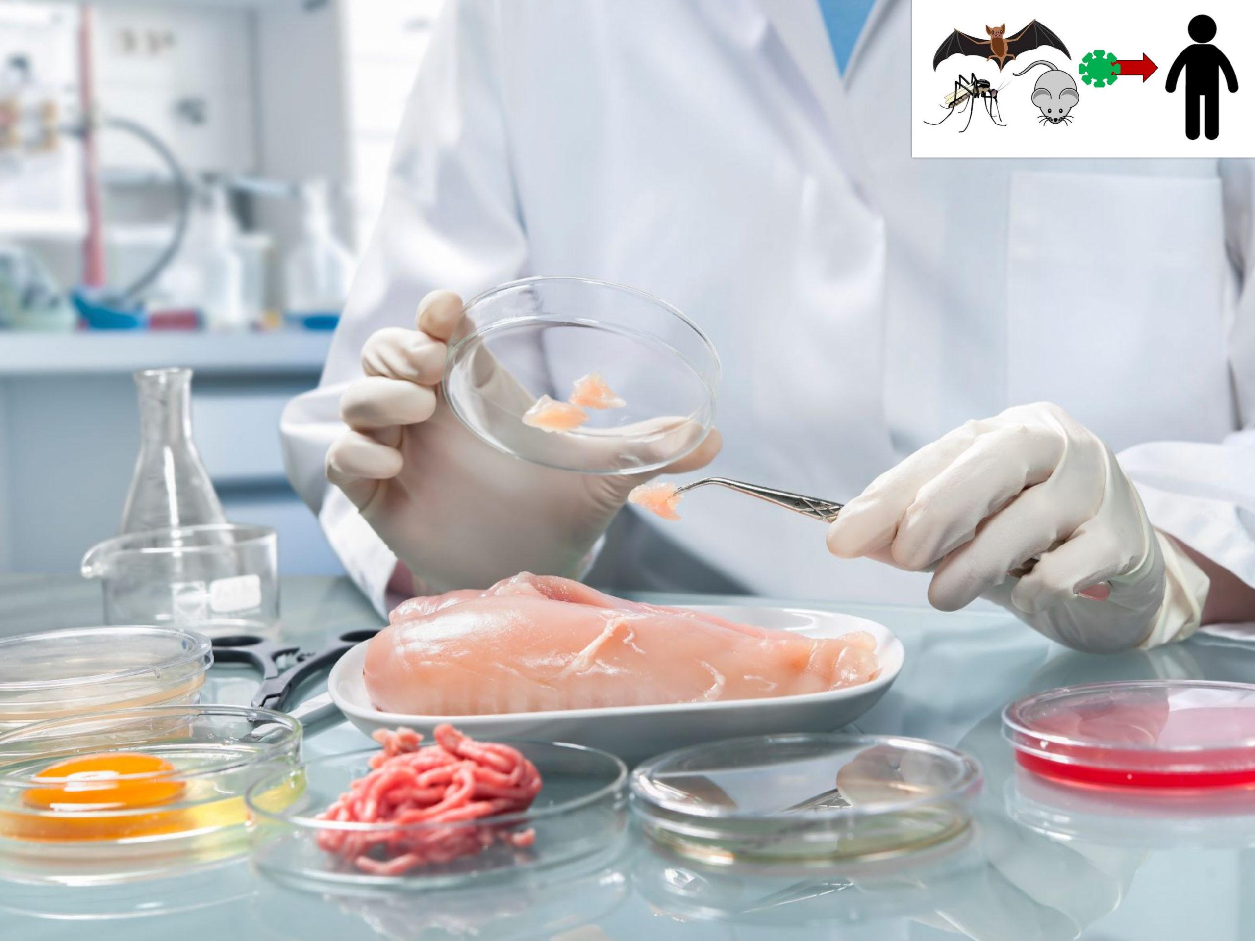 zoonotic_disease